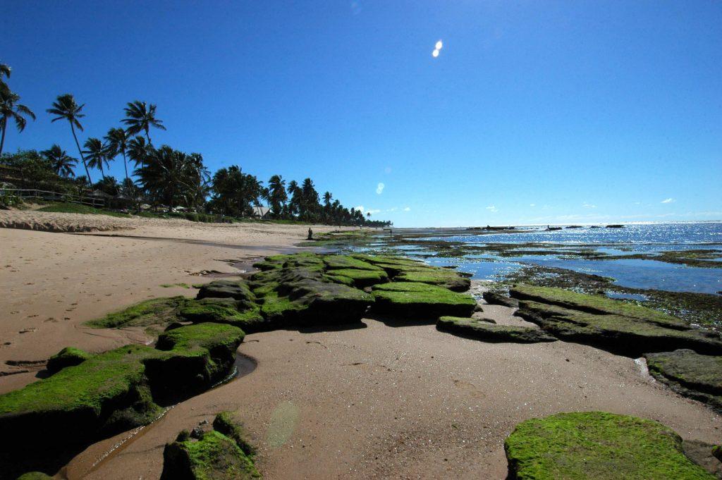 traslado iberostar praia do forte
